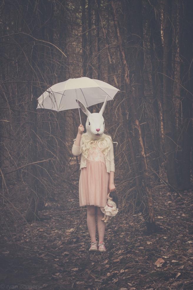 rabbitedit2