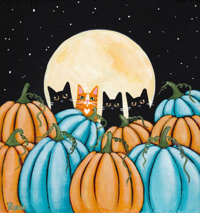 Cats in pumpkin patch